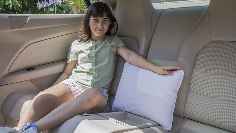 Memory Foam Classic Rectangular Pillows